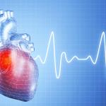 Le syndrome de Tako-Tsubo ou du cœur brisé suite à une rupture amoureuse