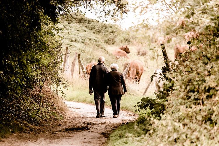 couple seniors se baladant main dans la main en forêt
