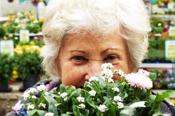 Top 5 des meilleurs bouquets à offrir à sa grand-mère
